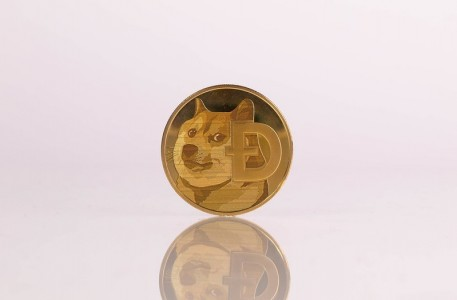 Dogecoin To The Moon: Everything You Need To Know About Doge In 2021